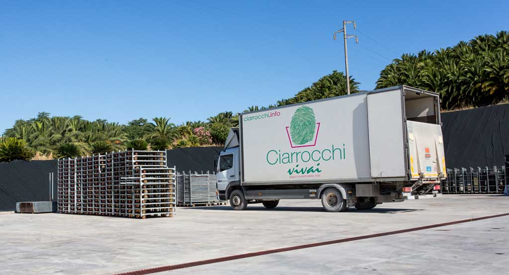 Logistique_ciarrocchi